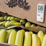 logistica-per-il-settore-agroalimentare